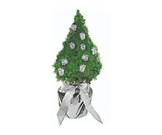 Kerstboom Mini Gift