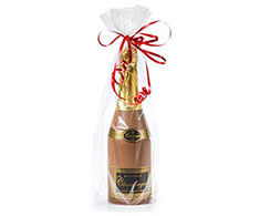 Fles Chocolade Champagne